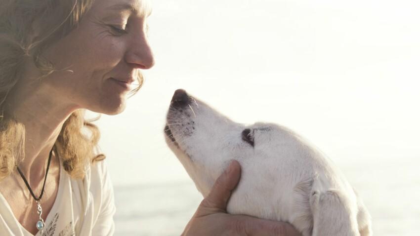 5 clés pour communiquer avec son chien