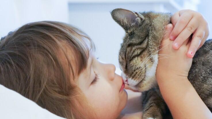 6 signes qui prouvent que votre chat vous aime