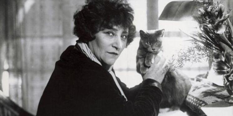 Les chats préférés des écrivains célèbres
