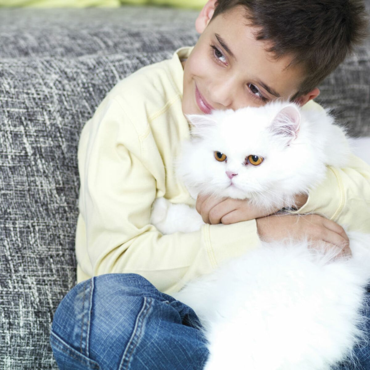 Mon Chat Dort Sur Mes Pieds cohabitation entre chat et enfant : les idées reçues en 10