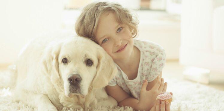 Les animaux de compagnie : une source de bien-être au quotidien