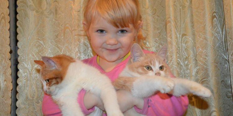 Pourquoi vivre avec un chat nous fait tant de bien