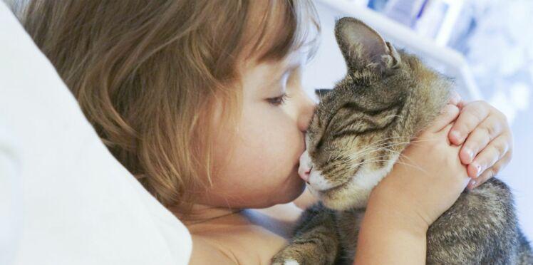 Le chat est-il un allié pour mon enfant ?