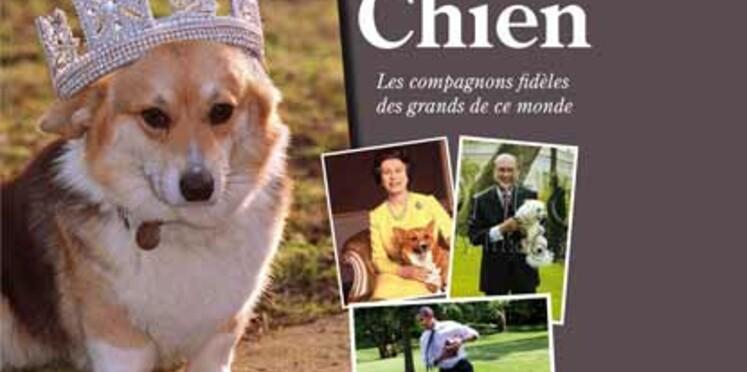 Stéphane Bern nous raconte ce qu'est une vie de chien