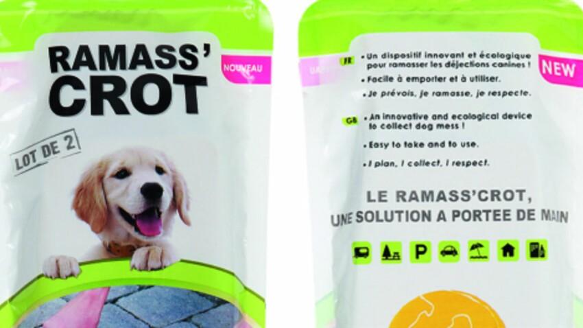 Un accessoire malin pour nos chiens