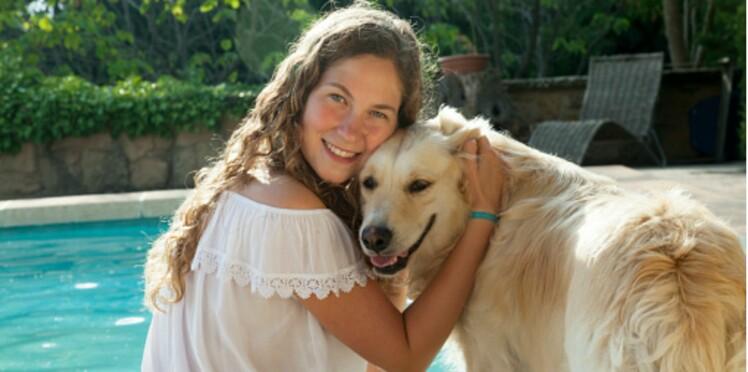 Animalis se mobilise pour l'adoption