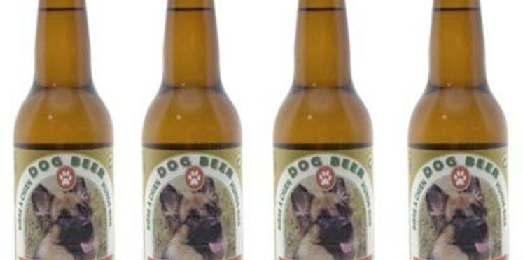De la bière pour les chiens aussi