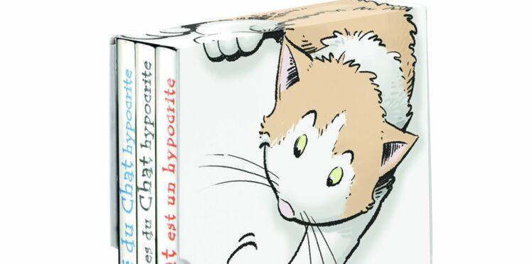 Les péripéties de nos amis les chats