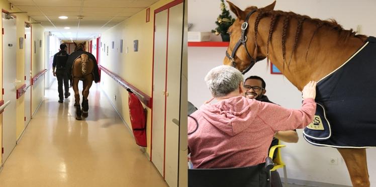 Un cheval visite à l'hôpital des malades d'Alzheimer