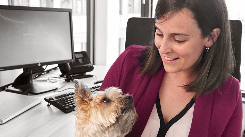 Emmener son chien au travail : un objectif pour 2020