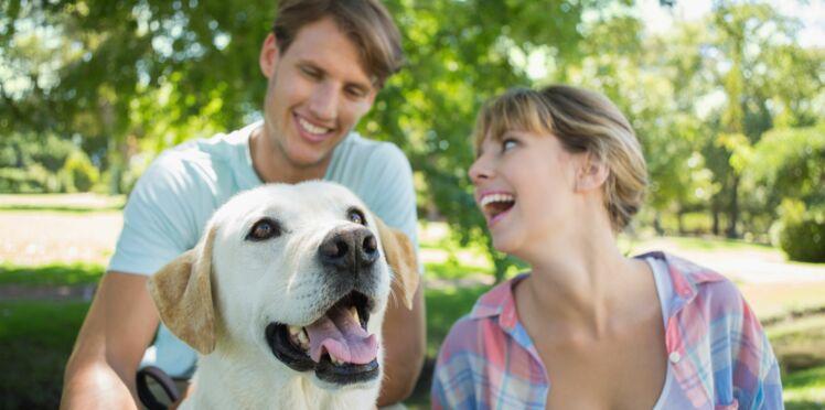 Emprunte mon toutou :  pour ne pas laisser votre chien seul pendant les vacances