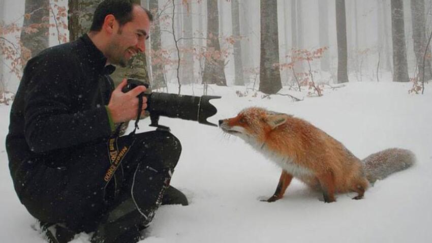 Des instants magiques capturés entre photographes et animaux