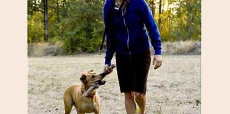 Insolite : la palme d'or du meilleur chien