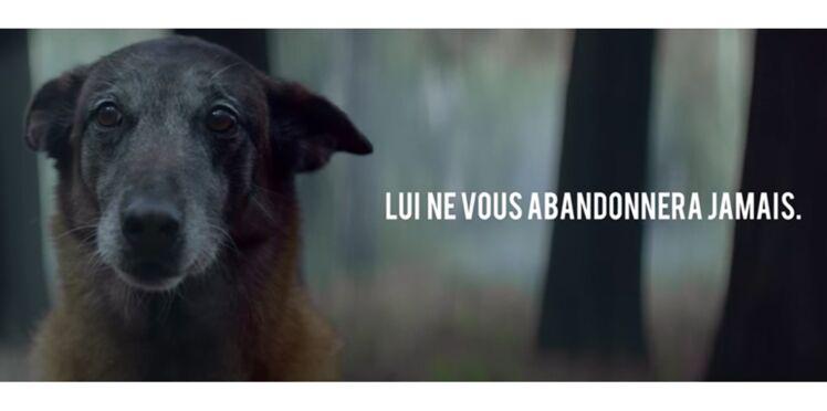 La vidéo choc de 30 Millions d'Amis contre l'abandon