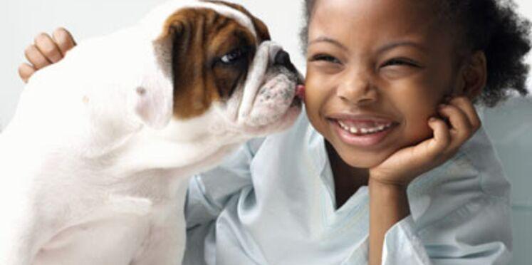 Le chien, bouclier anti-allergies ?