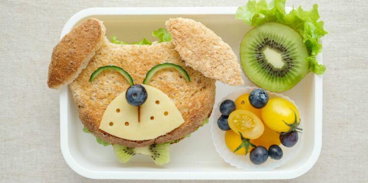 Manger cru, un danger pour nos animaux domestiques ?