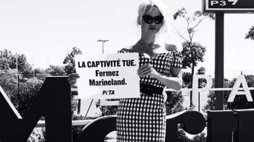 Pamela Anderson milite pour la fermeture du Marineland d'Antibes
