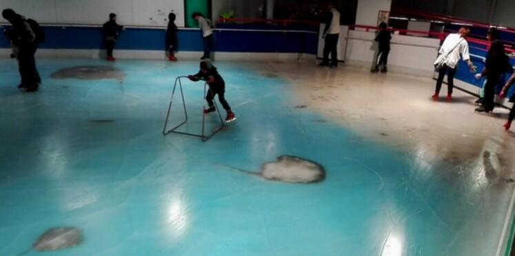 Une patinoire japonaise construite sur des milliers de poissons morts fait scandale