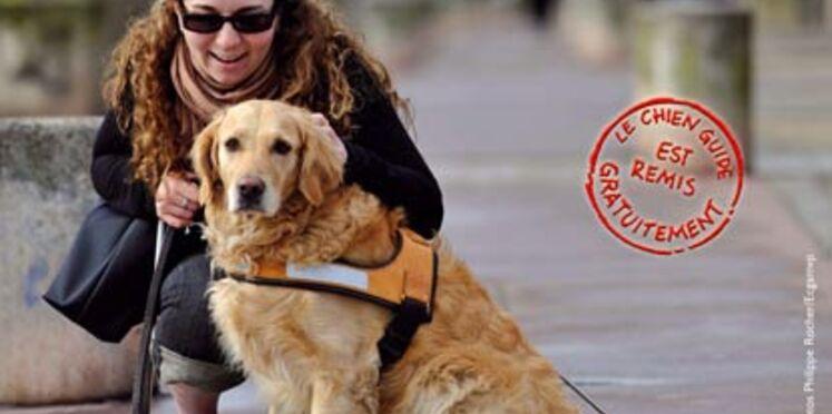 Les chiens guides d'aveugles font leurs portes ouvertes