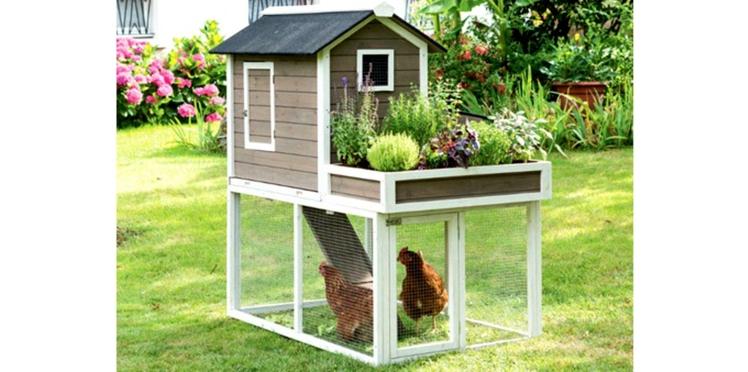 Des maisons de poules super élégantes