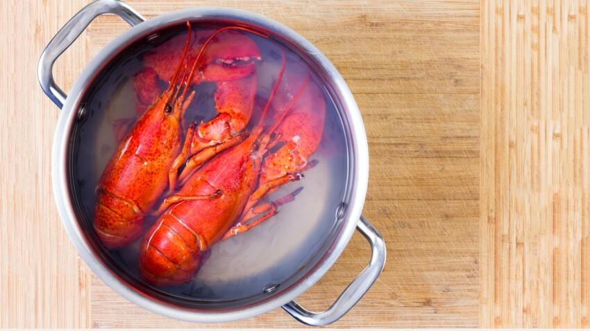 La Suisse interdit d'ébouillanter des homards vivants