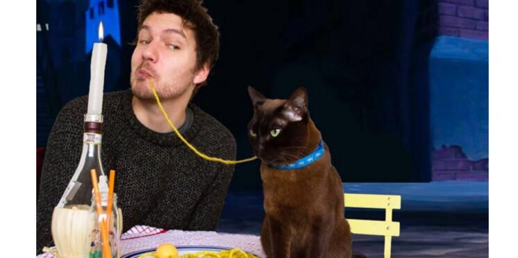 Un couple reproduit des scènes de films cultes avec des chats