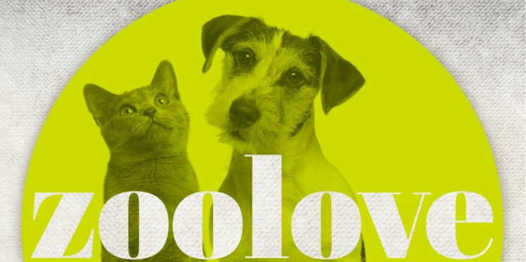Le site Zooplus donne un coup de pouce aux associations animalières