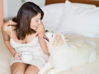 Adoption : un animal, c'est bon pour le moral !
