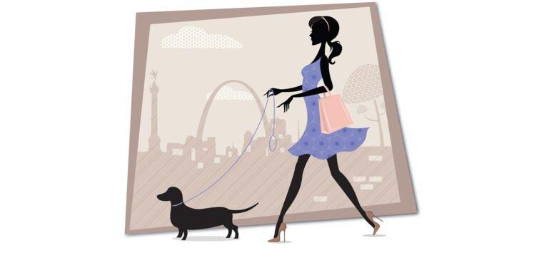 Comment apprendre à son chien la marche en laisse