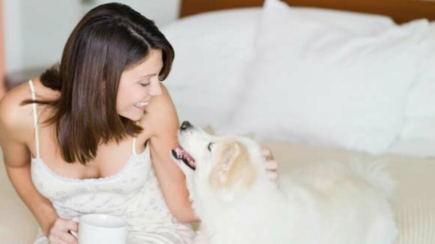 Comprendre son chien pour mieux l'élever