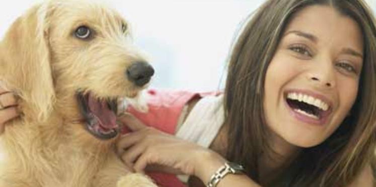 Le chien : efficace contre l'obésité et la dépression