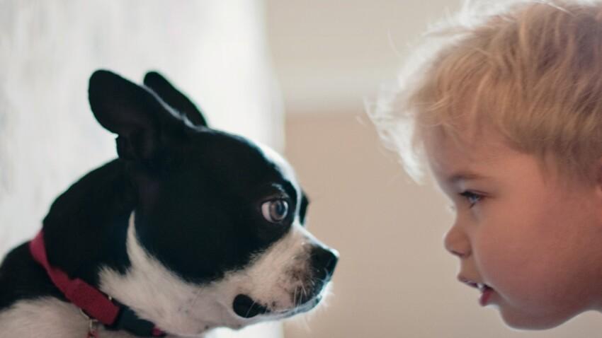Qu'apporte un chien à mon enfant ?