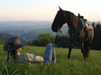 Soigner un cheval par les plantes