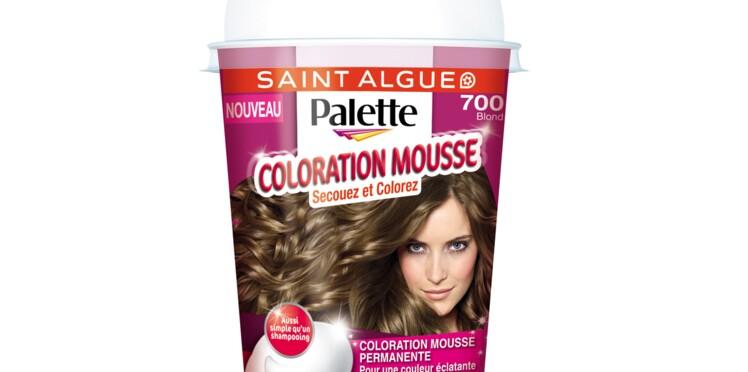 Saint Algue Palette secoue l'univers de la colo maison avec son format shaker