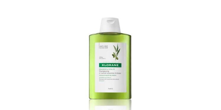 Shampooing à l'olivier, Klorane, le meilleur produit capillaire en pharmacie