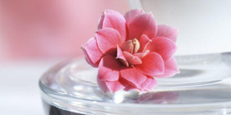 """Yves Rocher """"enseigne de l'année"""" en beauté et parfumerie"""