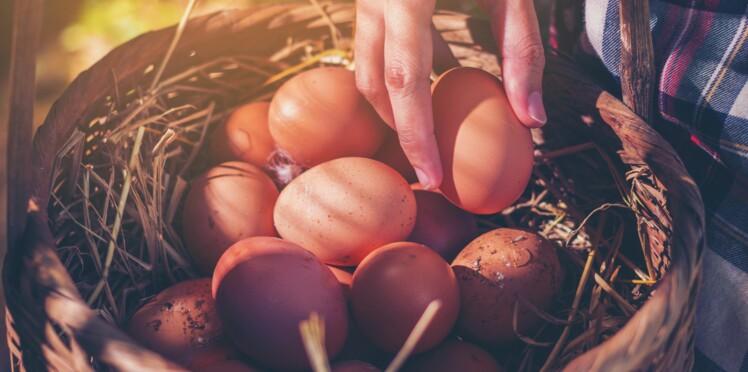 L'œuf : découvrez tous ses bienfaits beauté