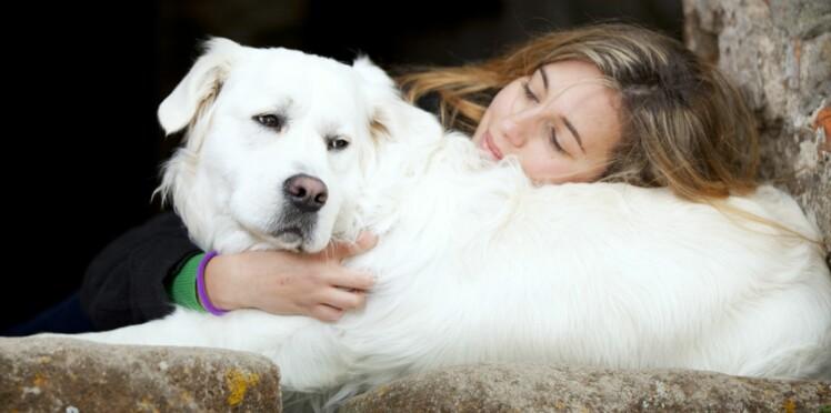 J'ai testé : La télépathie avec les animaux