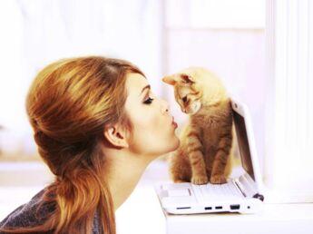 Moi et mon chat, toute une histoire…