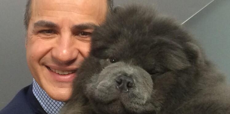 """Enfant """"muet"""", ce vétérinaire célèbre a appris à communiquer grâce aux animaux"""