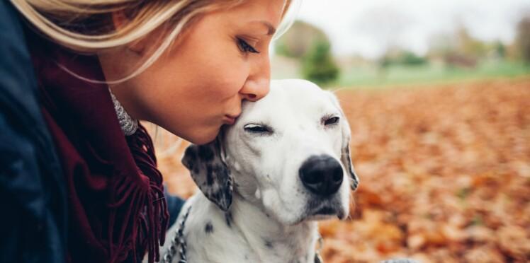 Les célibataires propriétaires d'un chien vivent plus longtemps