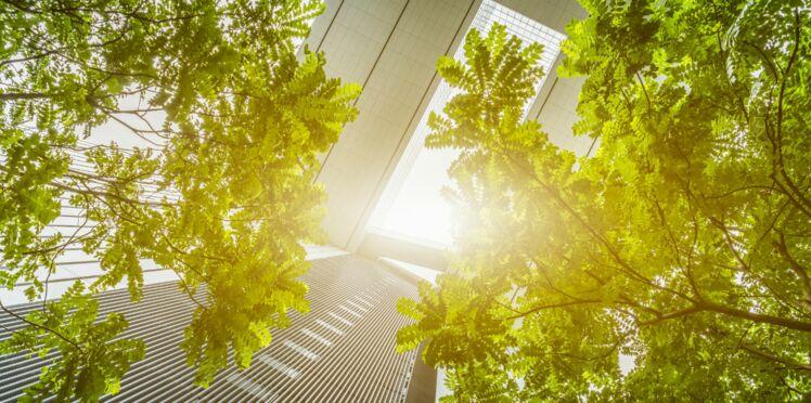 La nature en ville a des effets bénéfiques sur la santé mentale