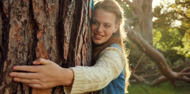 Sylvothérapie : attention, faire des câlins aux arbres peut être dangereux !