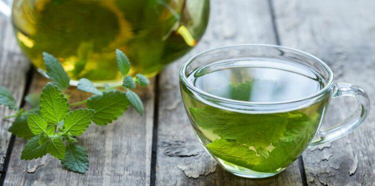 Le thé à la menthe poivrée, la boisson dynamisante qui booste notre mémoire