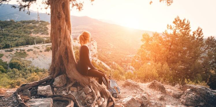 La sylvothérapie : entrer en contact avec les arbres pour améliorer sa respiration