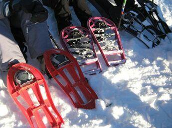 Trois conseils pour bien acheter ses raquettes à neige