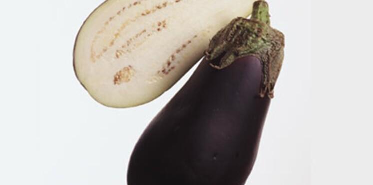 L'aubergine, savoureuse plante potagère