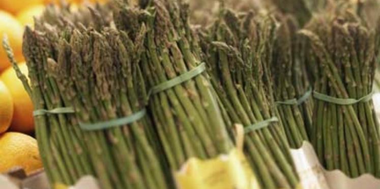 Asperges vertes de printemps, jaune d'œuf et fines lamelles de comté
