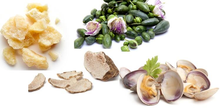 6 ingrédients de la cuisine italienne