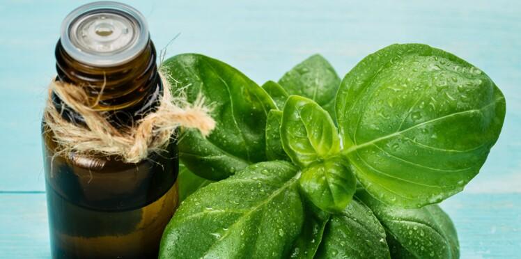 Le guide pour utiliser les huiles essentielles en cuisine